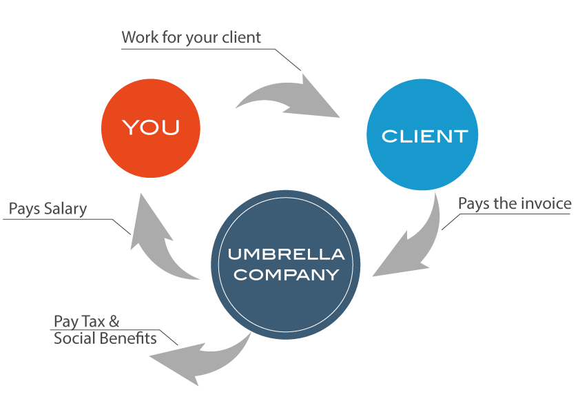 flowchart-of-umbrella-employment-